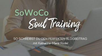 So schreibst du den perfekten Blogbeitrag mit Kat von Schreibliebe