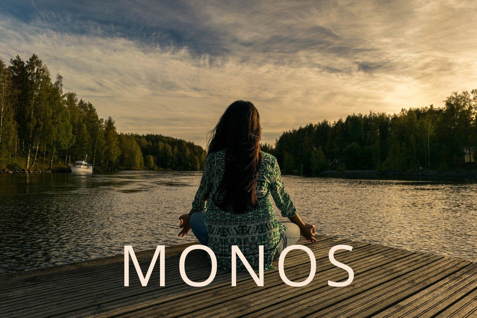 beitrag-monos-header